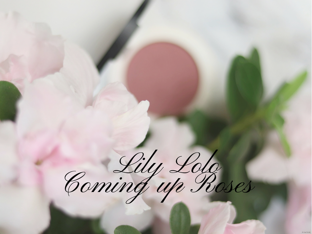 lily-lolo-coming-up-roses-minerlany-roz